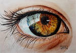 World Watercolor Month - Day 27 (Hazel Eye) by Harmony1965