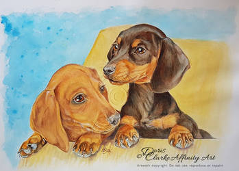 Two Little Dachsies (COMMISSION) by Harmony1965