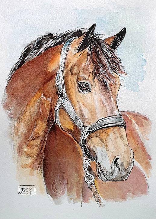 Inktober Day 14 - Horse by Harmony1965