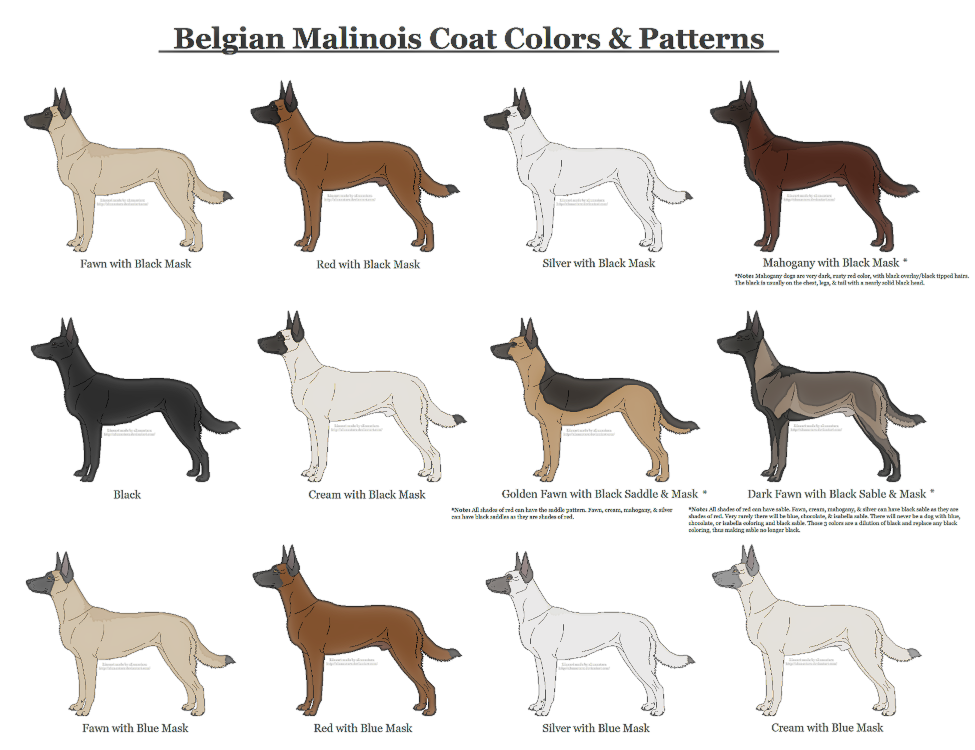 Belgian Malinois Coat Colors and Patterns by xLunastarx on ...