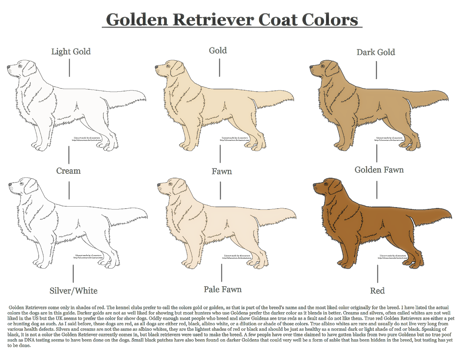Golden Retriever Coat Colors by xLunastarx on DeviantArt