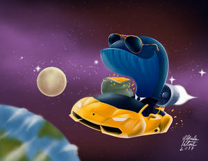 Rich whale from space