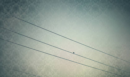 Line and Lonely by Sunira