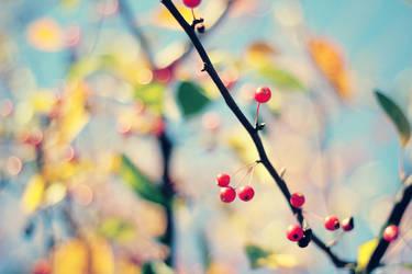 Love by Sunira