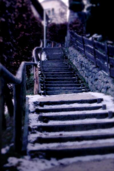 Berchtesgaden Steps by ericgfx