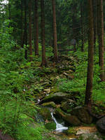 Stream in mountains IV by Vrolok-stock