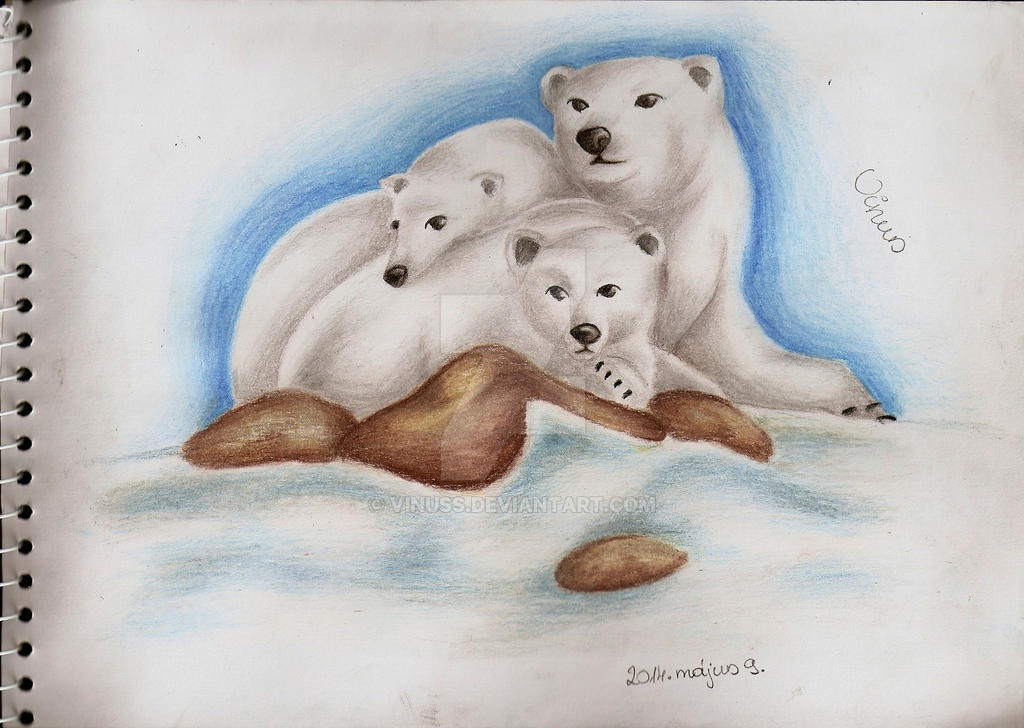 Ice bears by Vinuss