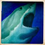 Shark by Max-CCCP
