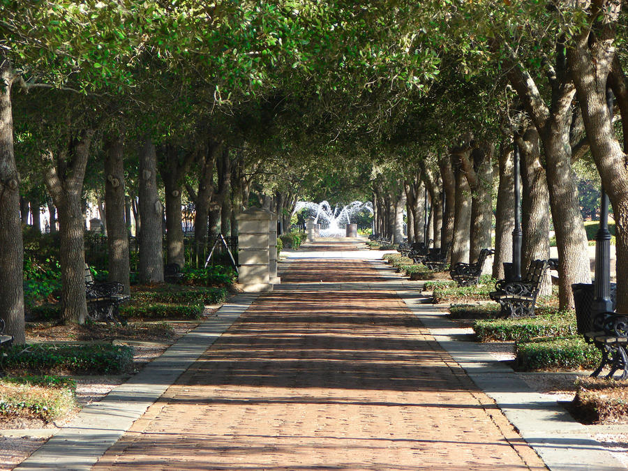 Walkway in Charleston by adrianparks