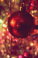 Remnants of the Holidays V by photonerd16