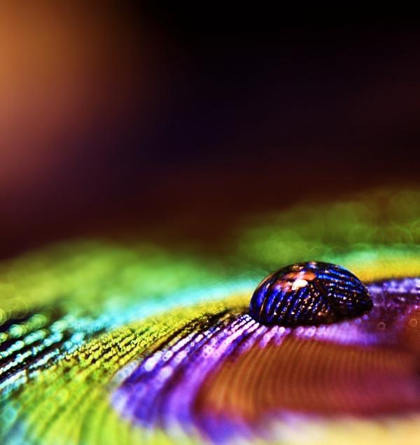 Indian Bead by photonerd16