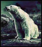 Polar Bear by MaraudingMaster
