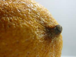 lemon macro 02 by tiffgraphic