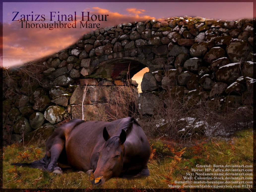 Zarizs Final Hour