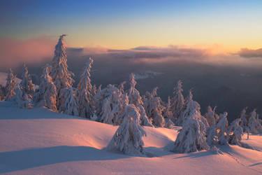Just morning in Carpathians, Ukraine by Sergey-Ryzhkov