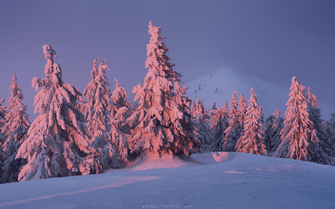 Carpathian winter evening by Sergey-Ryzhkov