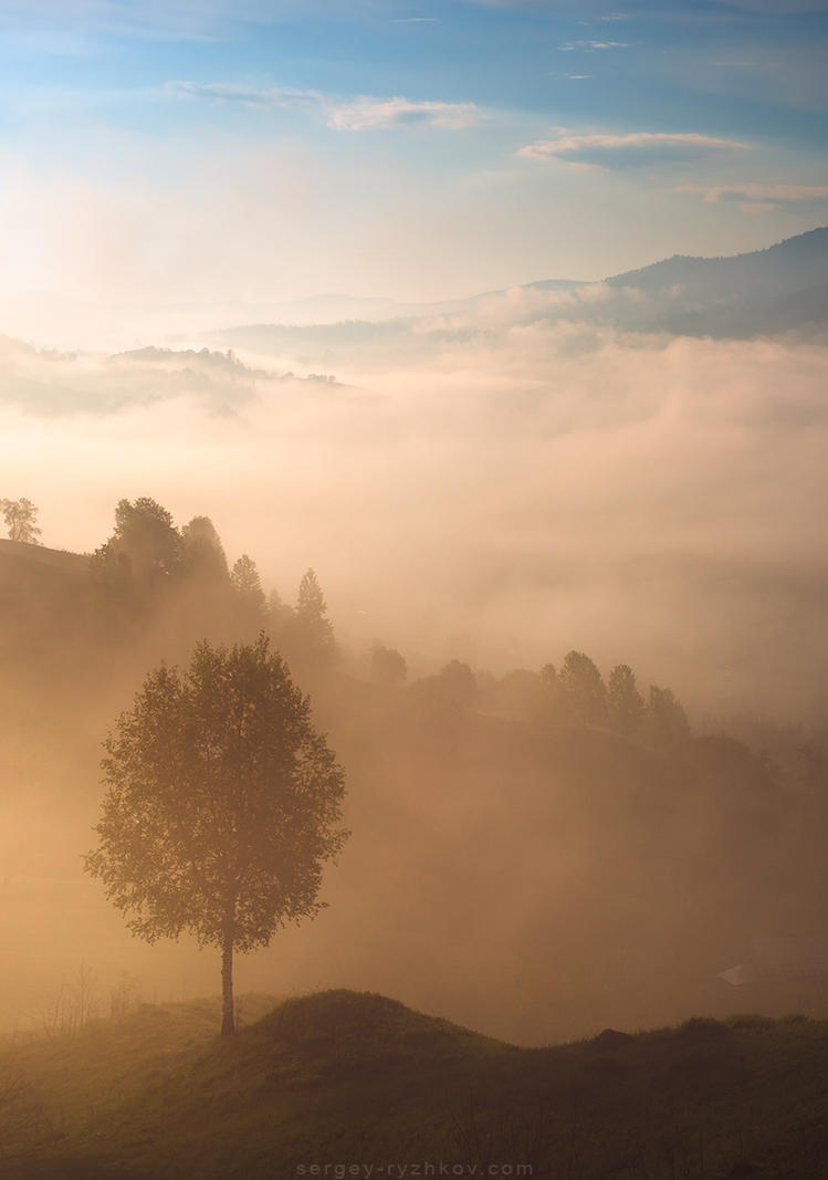 Misty morning in Carpathians by Sergey-Ryzhkov