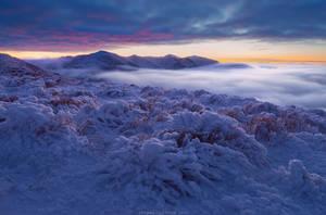 At the Galatului Mountain by Sergey-Ryzhkov
