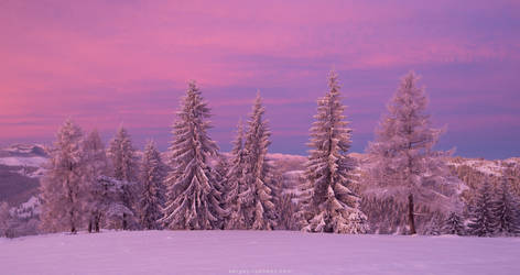 Winter in Carpathians by Sergey-Ryzhkov