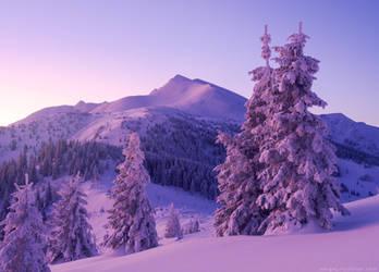 Mt. Pip-Ivan. Winter Carpathians, Ukraine