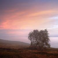 Autumn morning in Carpathians