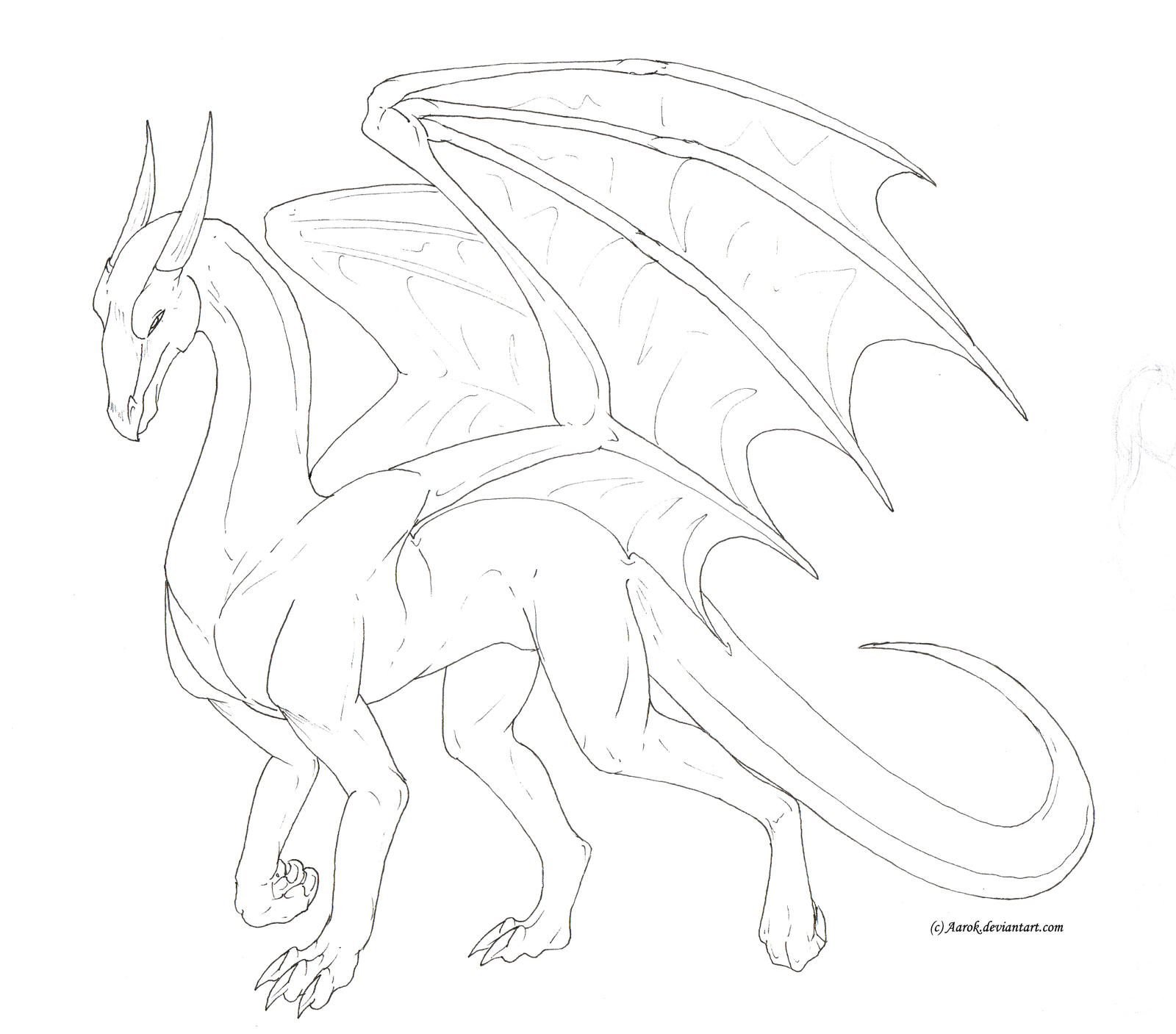 Dragon Lineart : Male dragon lineart free to use by aarok on deviantart