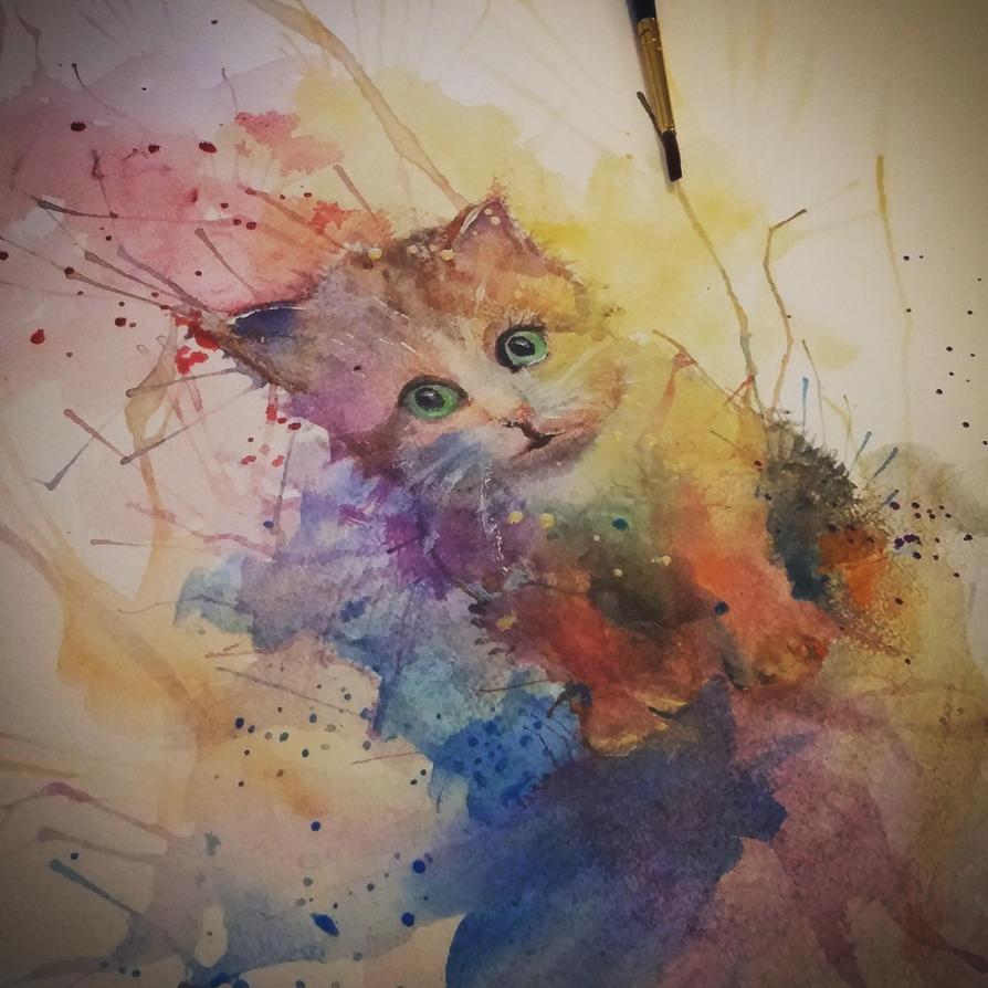 colourcat by Luckyten