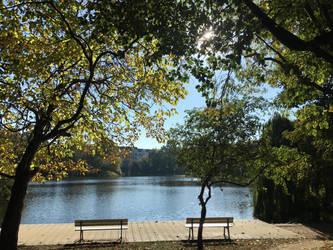 Schrevepark, Kiel, at midday by Alayaphi24
