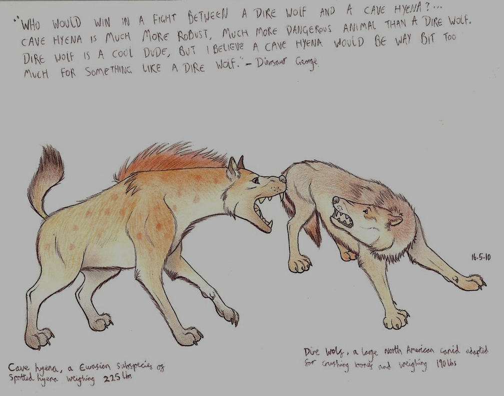 Dire wolf vs wolf - photo#21