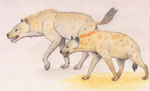 Cave hyena and spotted hyena by Dark-Hyena