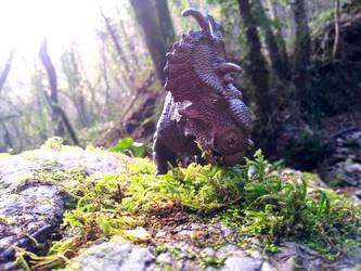 Papo Pachyrhinosaurus in Rovereto by Dark-Hyena