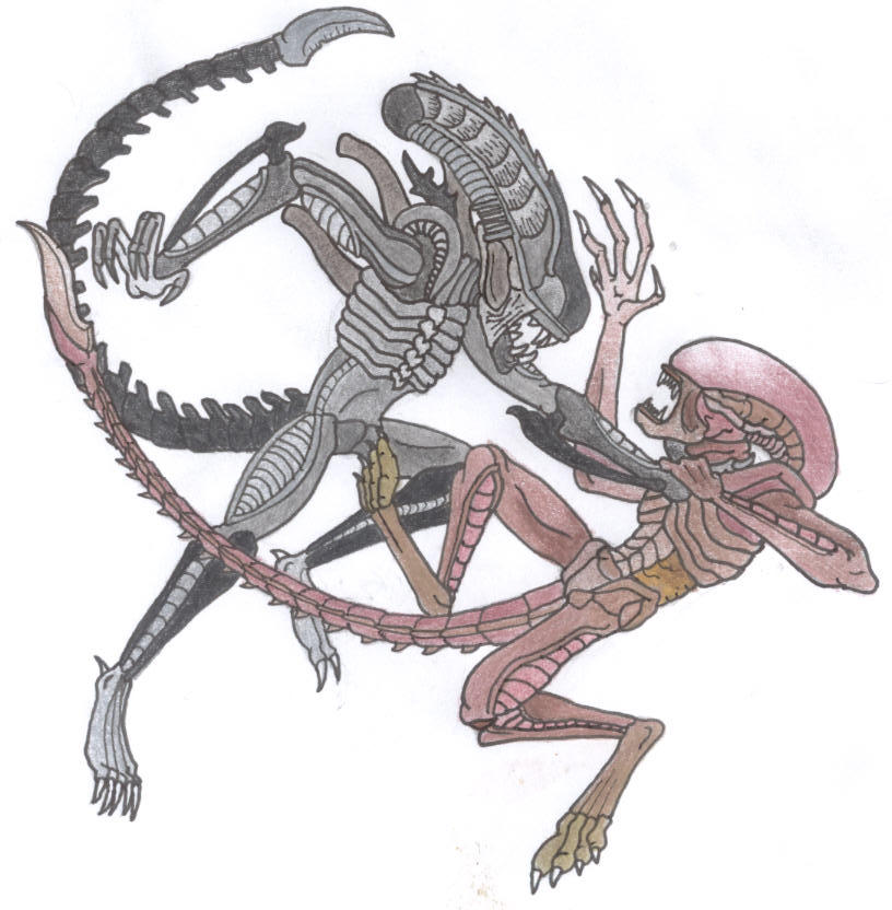 Dark XenomorphXenomorph Vs The Thing
