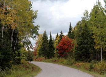 Country Roads in fall by blueangelstock