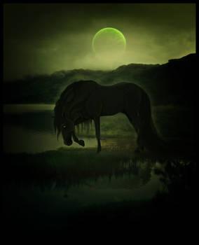 [comm] dead moon rising