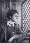 Harry Potter by edarlein