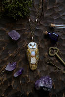 Barn Owl with Moonstone Necklace