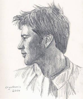 Sheppard profile sketch
