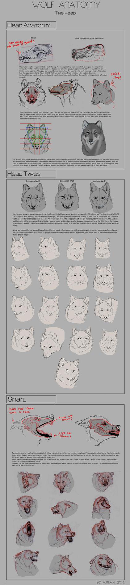 Wolf Anatomy - Part 3 by Autlaw