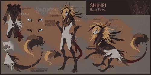 Shinri (beast forms) by Aeonrin
