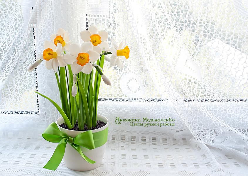 Daffodils by Vakhara
