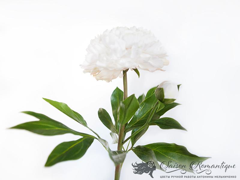 Craft Artisan Floral Foam