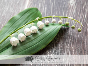 Lily of the valley  - Polymer Clay Flowers