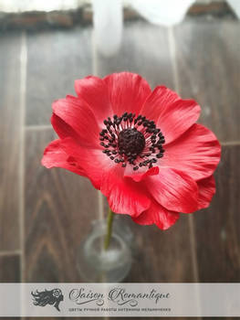 Red Anemone - Polymer Clay Flowers