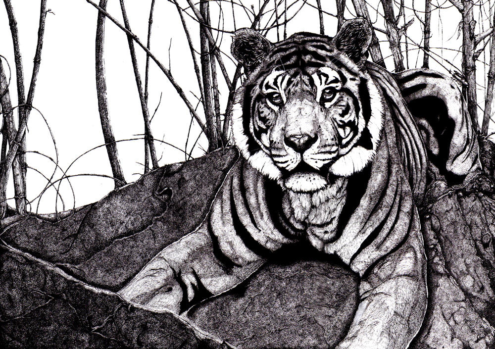 Pen and Ink favourites by MarinaNeira on DeviantArt