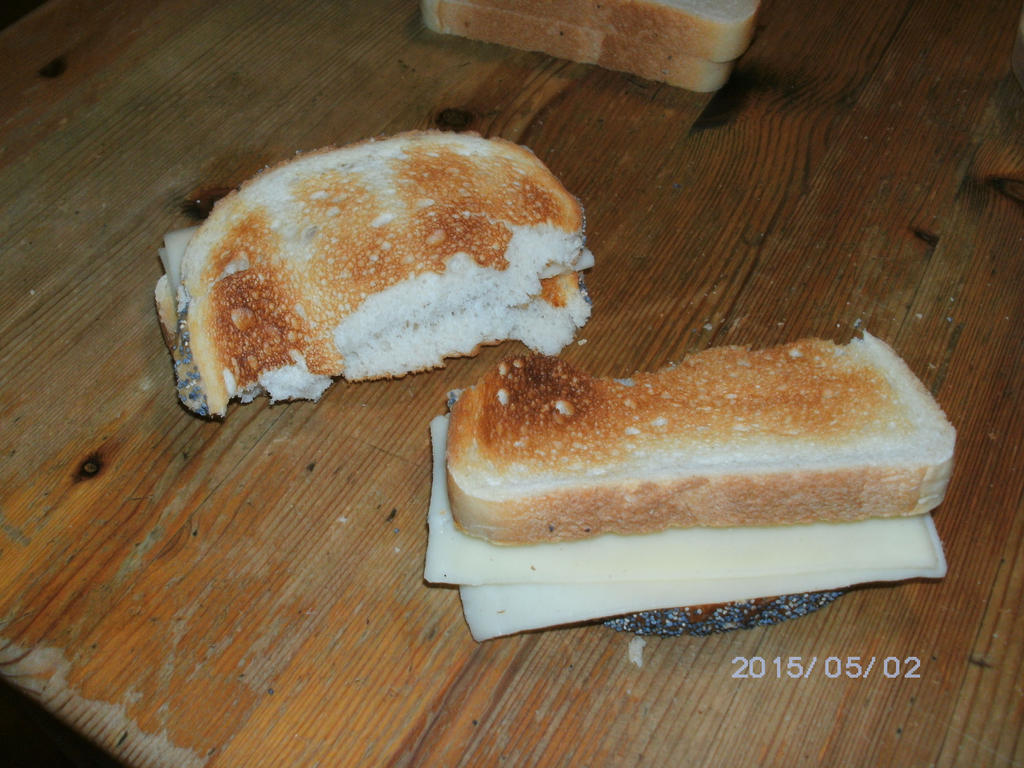 Folded toasted cheese sandwiches by KatarinaTheCat