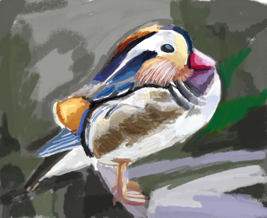 Duck by JKAM2