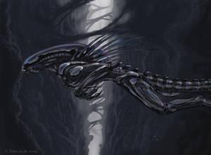 Leap Of Faith- Xeno art