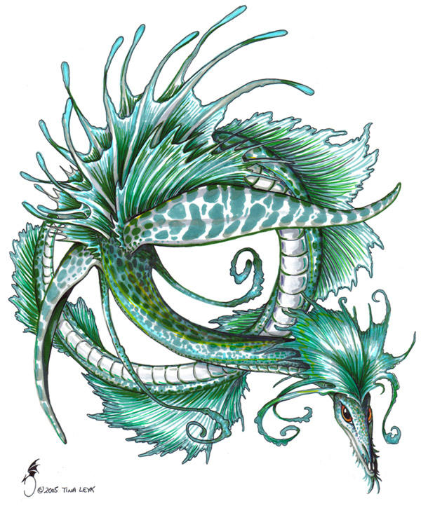 Leafy Sea Dragon by jaxxblackfox on DeviantArt