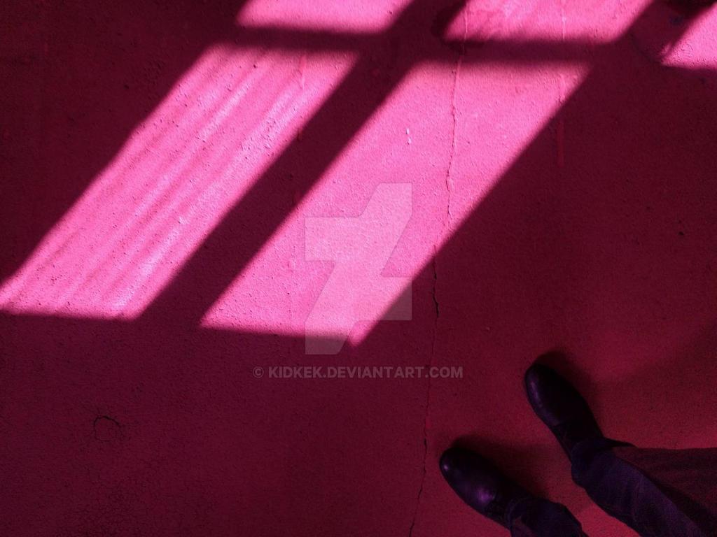 Violet window reflection by KidKek