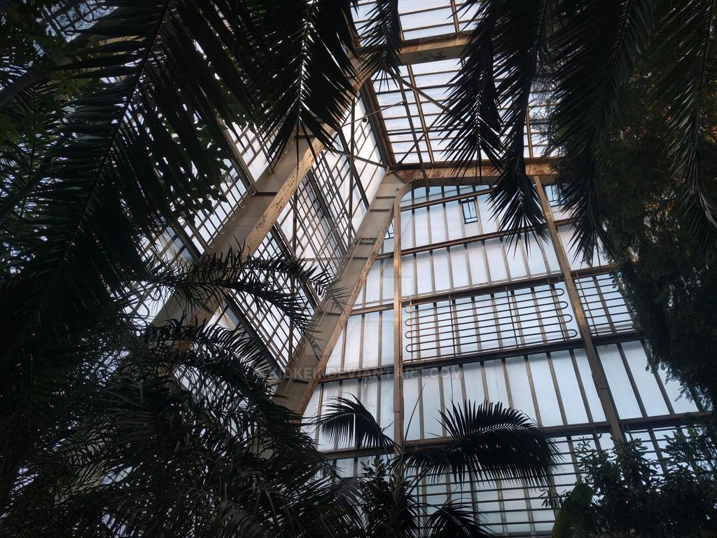 Old pre-war greenhouse by KidKek
